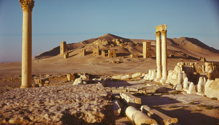 Palmyra, tower tombs