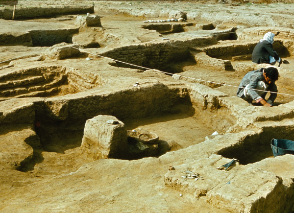 Remains of an Ubaid-period village (Photo Andrzej Reiche)