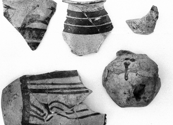 Fragments of painted vessels from the Ubaid period (Photo Piotr Bieliński)