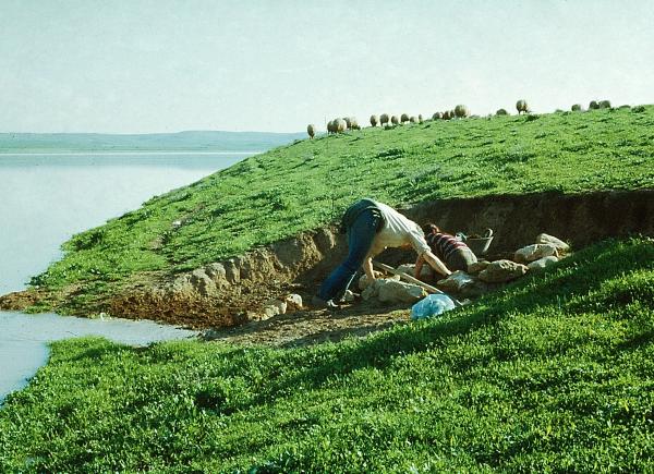 """""""Ratunkowa"""" eksploracja grobu z okresu Uruk już podczas przyboru wody w Tygrysie. (Fot. F.M. Stępniowski)"""