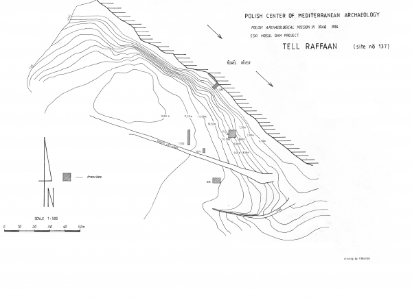 Plan of the site (Drawing P. Bieliński)