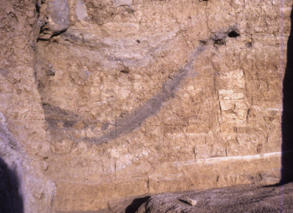 Tell Abu Hafur 'East'. Podłoga i ściana domu z okresu Mitanni widziana w przekroju archeologicznym (2. poł. 2 tys. p.n.e.).