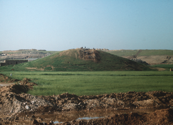 Tell Djassa al-Gharbi, panorama of the site.