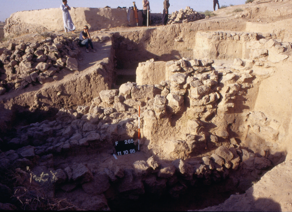 General view of the excavation site (Photo Andrzej Reiche)