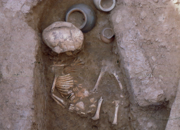 One of the children's burials found under the floors of houses; Early Dynastic III period (second half of the 3rd millennium BC) (Photo Andrzej Reiche)
